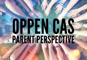 parent perspective post